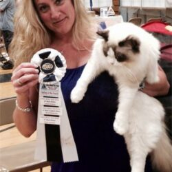 Maximus received another FOUR Finals at the Groton Show!